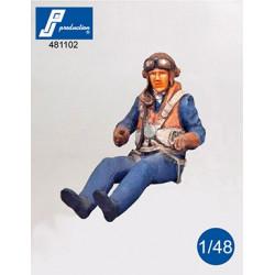 481102 - Pilote RAF assis...