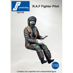 321118 - RAF fighter pilot seated in a/c (modern)