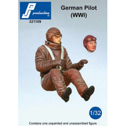 321109 - German Pilot seated in a/c (WW1)