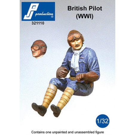 321110 - British Pilot seated in a/c (WW1)