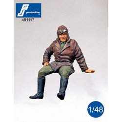 481117 - WW I Pilot seated...