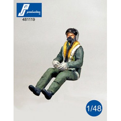 481119 - RAF Pilot seated...